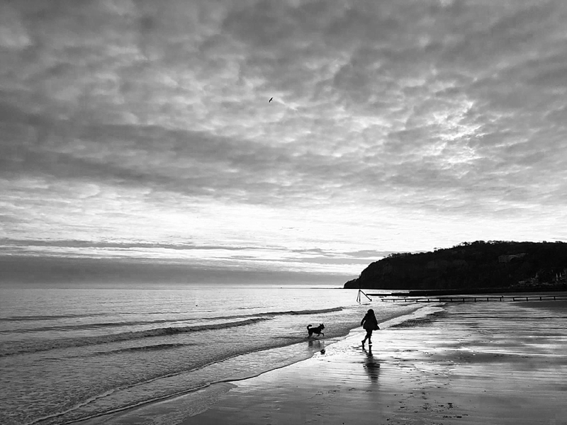 Shanklin Beach on Isle of Wight for a dog friendly beach